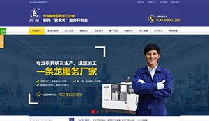东莞市莞模电子营销型网站建设案例
